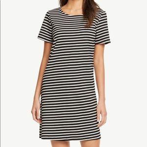 Ann Taylor Black Short Sleeve Shift Dress